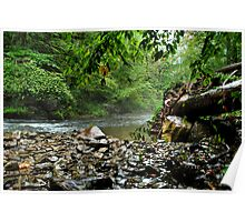 """ Rainy day - Nine Mile Creek, Camillus NY "" Poster"