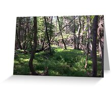 Naturescape 88 Greeting Card