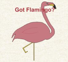 Got Flamingo Shirt 1 by AHungryFlamingo