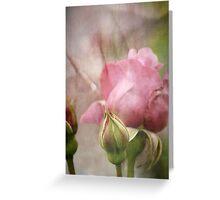 Go Softly  Greeting Card