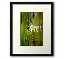 White Flower in the brush Framed Print