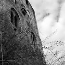 Frankenstein Castle by Bhavanti