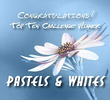 Top Ten Banner Pastel & White  by John Poon