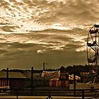 After the Fair by Linda Bianic