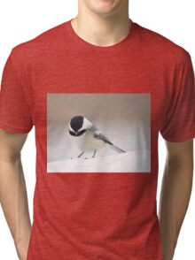 Chickadee standing on snow Tri-blend T-Shirt