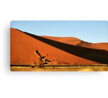 Dunes, Dead Tree & Dry Tsauchab River Valley, Namibia  Canvas Print