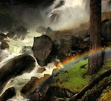 Mist Trail by Barbara  Brown
