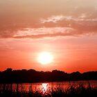 Lake Jessup Sunset by Peyton Duncan