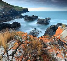 Loving Tasmanias Coastline.... by David Murphy by David Murphy