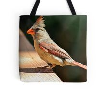 Female northern cardinal in the morning sun Tote Bag