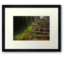 Mist Trail Abstracted Framed Print