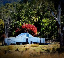 The Shearing Shed by myraj