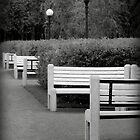 Benches in the Park by Lucinda Walter