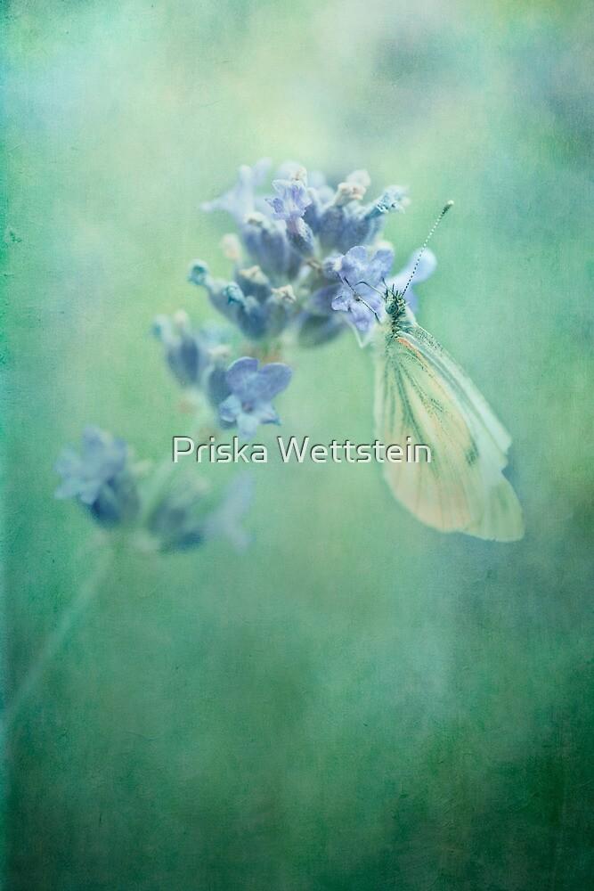 land of milk and honey by Priska Wettstein