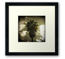 palm thursday Framed Print