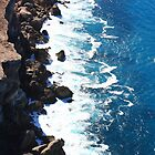 Bunda Cliffs. Nullarbor NP Sth Australia by Paul Birch