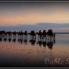 Cable Beach Train by Kat de la Perrelle