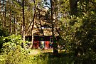 MVP86 Summer house, Prerow, Germany. by David A. L. Davies