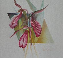 Lady Slippers by Rita Chisholm