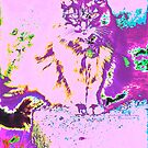 Psychedelic Cat by DreamCatcher/ Kyrah