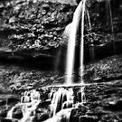 Georgia Falls by Scott Lebredo