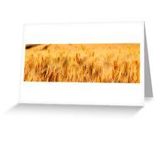 Gold Glow Greeting Card