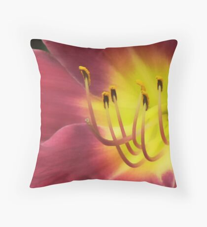Floral Bloom 4 Throw Pillow