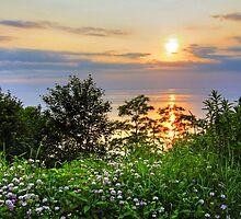 Bayfield Sunset by Wendy  Meder