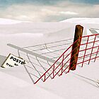 Snow Fence by Peter Sucy