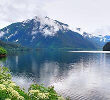 Scenic Sitka, Alaska by Jennifer Hulbert-Hortman