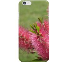 Australian Native in Flower iPhone Case/Skin
