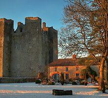 Barryscourt Castle in Winter by Robert Karreman
