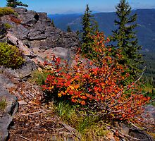 Indian Ridge by Charles & Patricia   Harkins ~ Picture Oregon