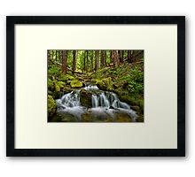 Cascades Creek Framed Print