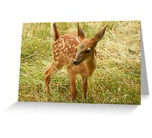 Where did Mom go? Greeting Card