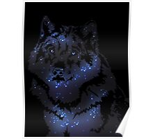 Star Wolf Poster
