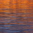 Water and Light by Tim Haynes