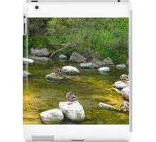 Mallard Sanctuary iPad Case/Skin