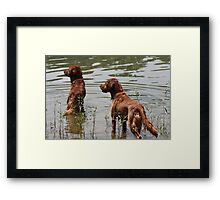 Poised To Play! 11 Framed Print