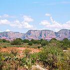 Sedona Mountains - 7-09 by denisespictures