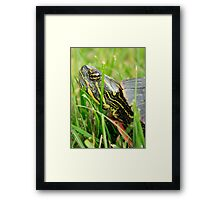What Do You Want Framed Print