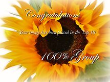 100% group Challenge Banner. by Susie Hawkins
