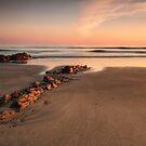Looking to Sea by Robert Karreman