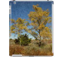 Oklahoma Outback in Fall Color iPad Case/Skin
