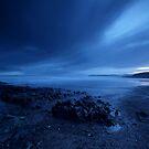 Moody Blues by Robert Karreman