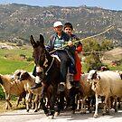 Rural Cyprus by Alex Cassels
