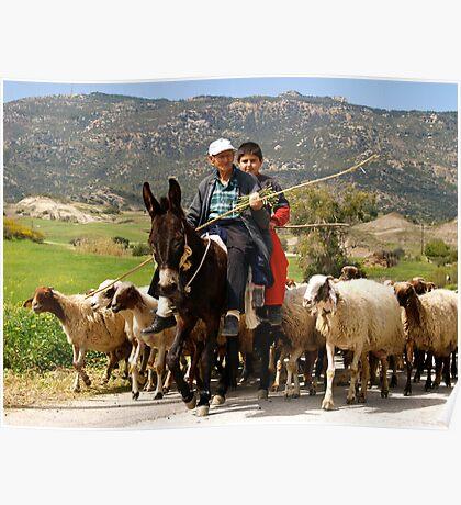 Rural Cyprus Poster