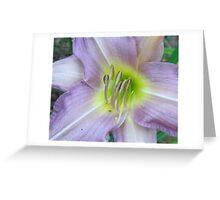 Color Summer... Lavender! Greeting Card