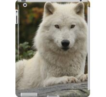 Prince of the forest iPad Case/Skin