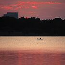 Rowing Into a Summer Sunset by Lisa Holmgreen
